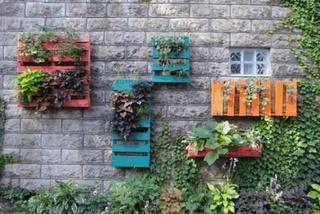 fachada con jardín de palets