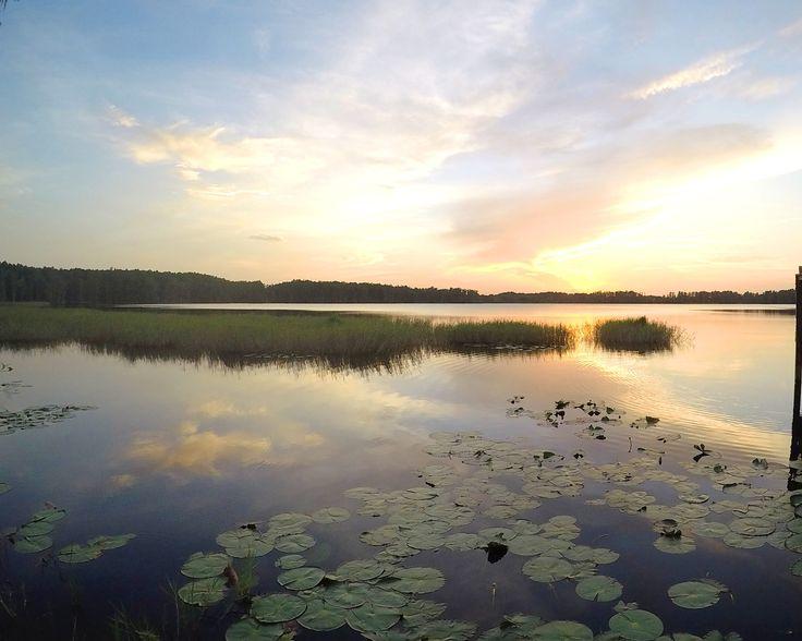 93 Best Parks Of Central Florida Images On Pinterest