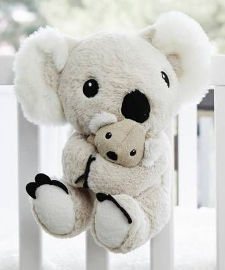 Cloud b Soothing Sounds Mama Koala™ | zulily