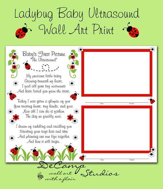 161 best scrapbooking pages layouts images on pinterest babys first year ladybug personalized premade scrapbook page or wall art print makes a unique keepsake and perfect gift negle Gallery