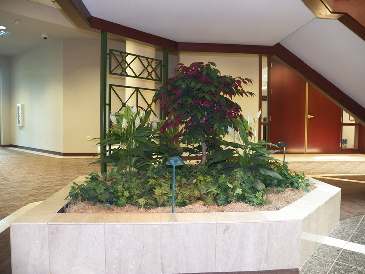 High Quality Beautiful Interiorscape