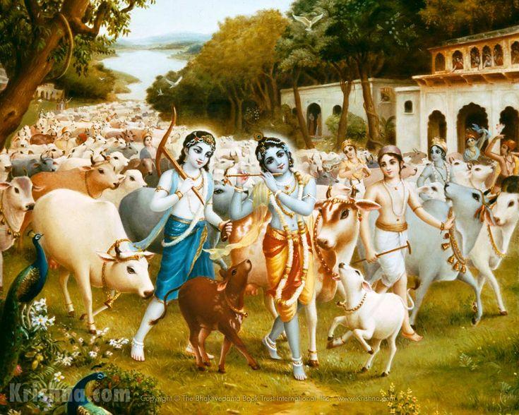 Krishna and Balarama, cows and cowherd boyfriends, Goloka Vrndavana