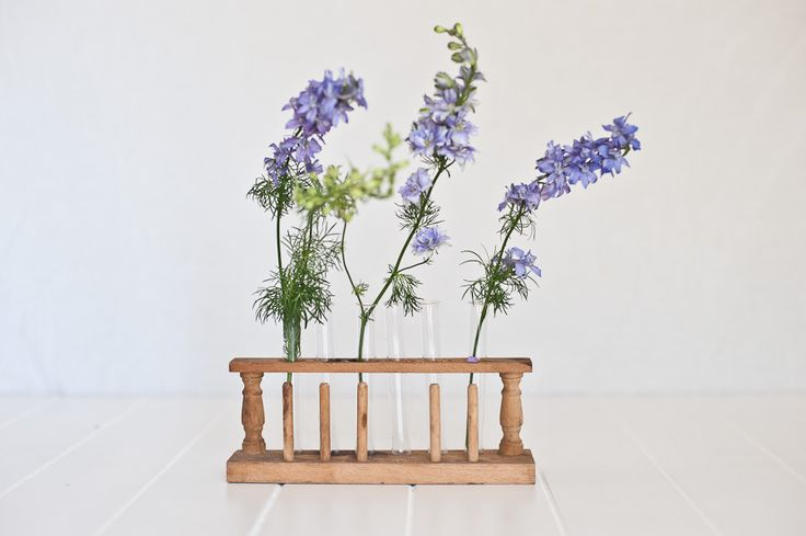 Vintage Test Tube Vase and Holder for flowers with botanical theme styling