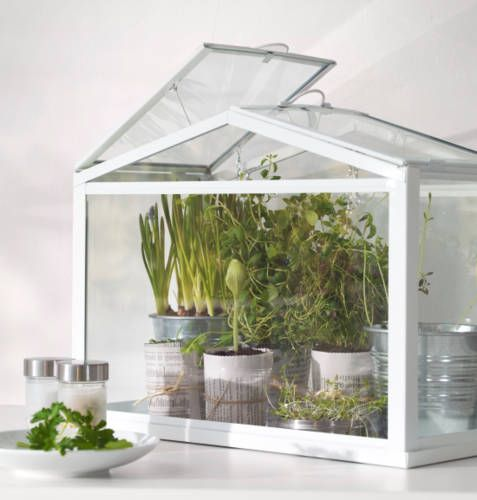 put herbs in the greenhouse we saw at home goods  IKEA Catalog 2015. Best 20  Ikea 2015 catalog ideas on Pinterest   Ikea closet