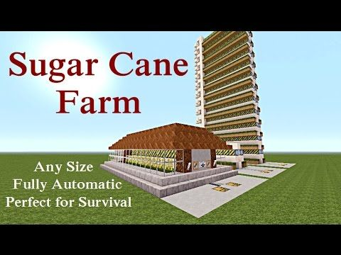 Minecraft Tutorial : Automatic Sugar Cane Farm Unlimited Supply Plus MOR...