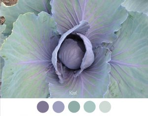 KOOL - Mooie zachte tinten groen en lila / paars voor in het interieur