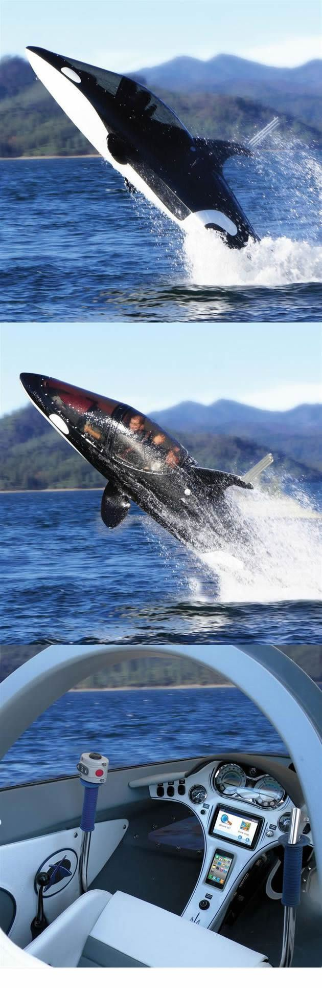 The killer whale personal submarine.