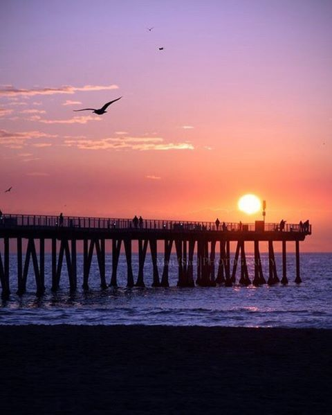 La Jolla é um local com uma beleza natural ímpar que merece ser visitado. Composta por falésias, rochedos e praias lindíssimas com fauna bastante abundante. O local consegue combinar uma atmosfera familiar tranqüila com uma cena gastronômica e comércio bastante agitado.  Localizada a cerca de 20 Km do centro da cidade, esta região que se extende por aproximadamente 11 Km ao longo da costa do pacífico, entre Pacific Beach e Del Mar ao norte da cidade de San Diego. 🌎🌊☘️🦋 La Jolla is a place…