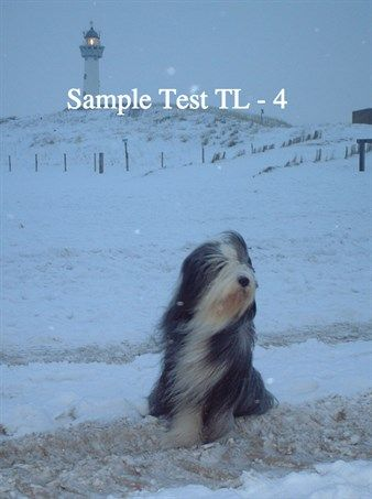 Enjoyed reading Sample Test TL - 2 on Booktrack