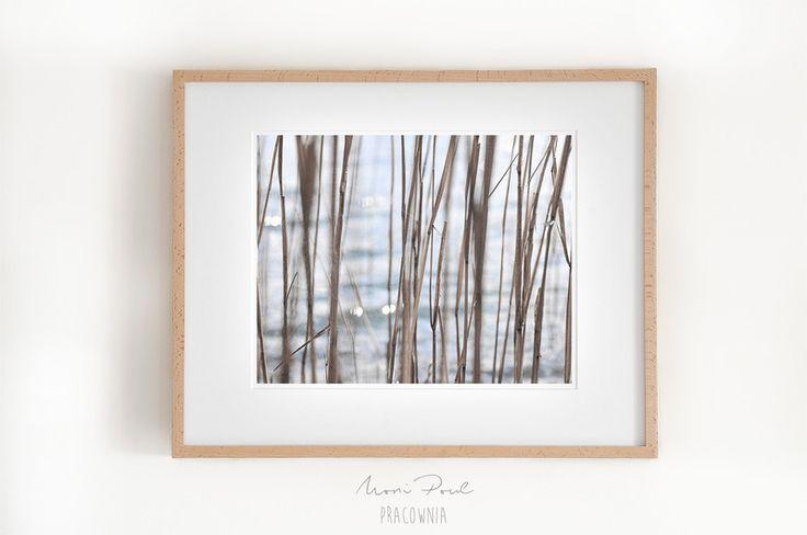 Wyciszenie. 1 (30x40 cm) - MoniPoul - Fotografia kolorowa
