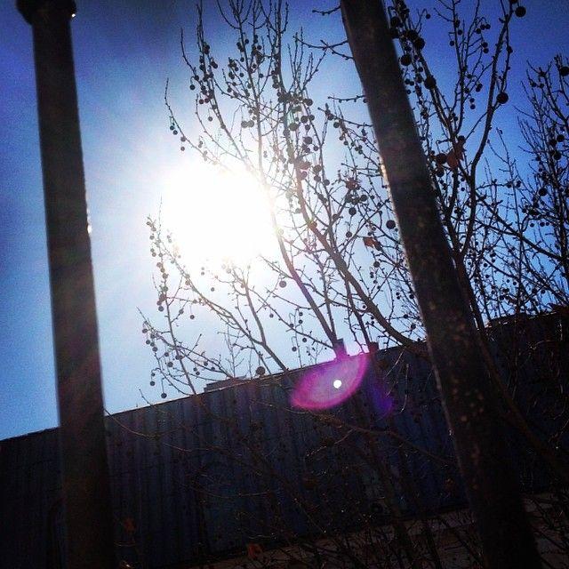 The sun behind the bars #rome #italy #roma #italia #stazionetermini