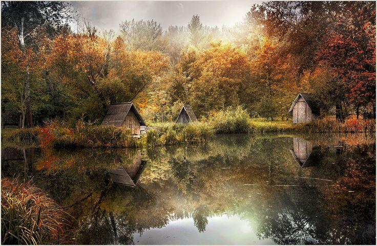 Seasonal moody pic from my fairy land