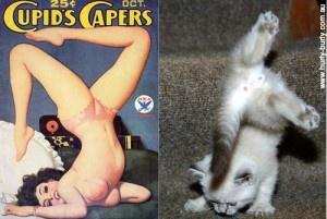 Γάτες που μοιάζουν με κορίτσια pin-up