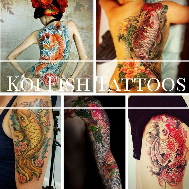 145 best images about cool tattoos for dudes on pinterest for All about koi fish