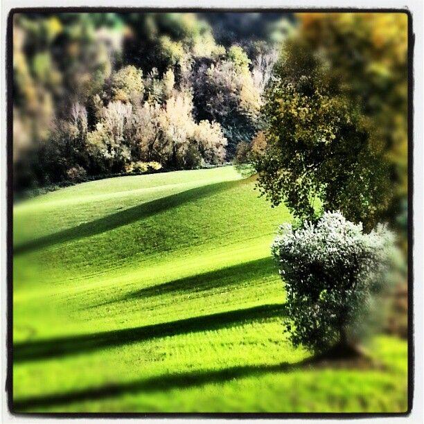 Ombre, campagna marchigiana in provincia di Fermo - Foto di @foraggio1