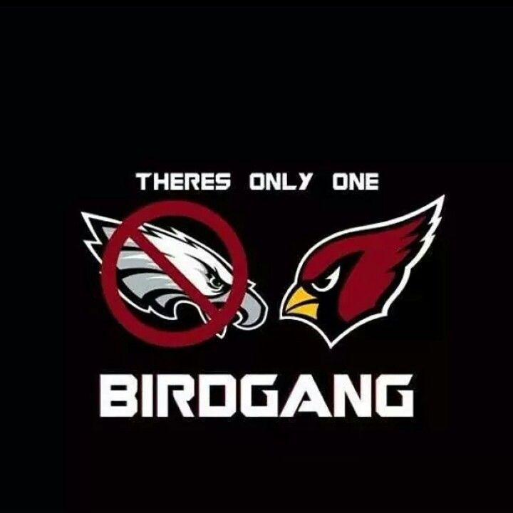 Az Cardinals Super Bowl Memes