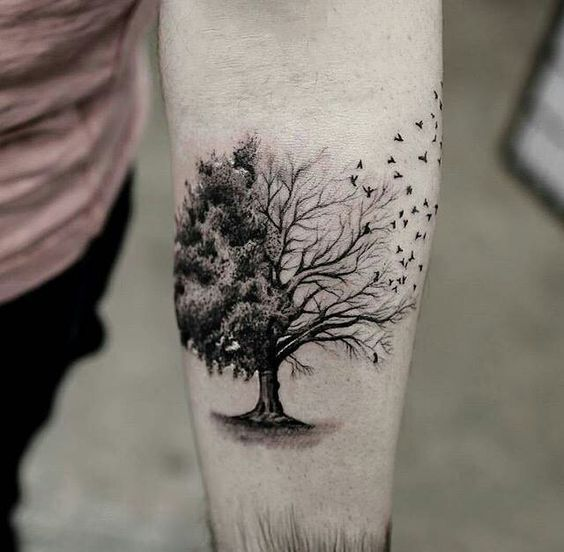 25+ Best Ideas About Tree Tattoo Designs On Pinterest