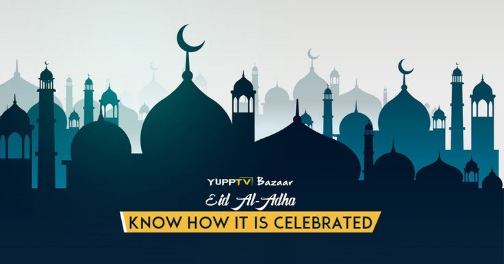 #EidMubarak2016: Know how #EidAlAdha is celebrated by watchig the video http://www.yupptv.com/bazaar/#!/watch/vaa1h80/Wild-Films-India/eid-al-adha-id-ul-zuha-or-bakr-eid-and-how-it-is-celebrated#773