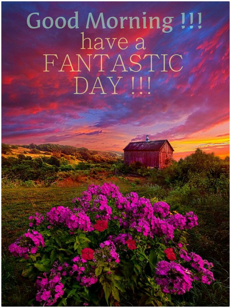 Good Morning....a wonderful day to All!
