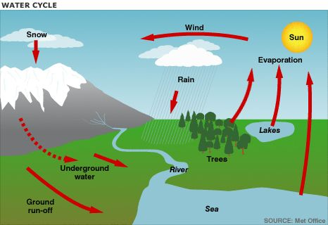 Water cycle for poster project | CC Cycle 2 Week 4 | Pinterest ...