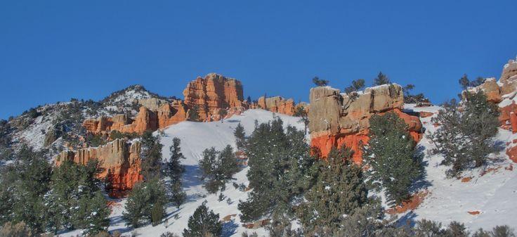 Desert in the snow.