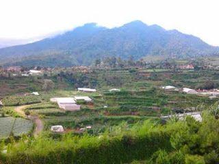 Villa Yang Bagus Pemandangan Indah Pegunungan Di Lembang - Sewa Villa Lembang Villa Istana Bunga Bandung
