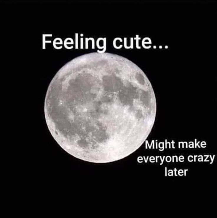 Pin by Angie Miller on Funny Stuff Full moon tonight