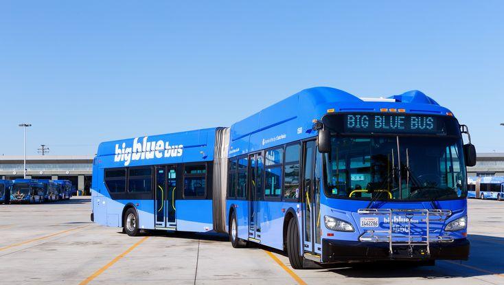 pinsadik perez on santa monica california | blue bus