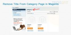 http://www.tricksofit.com/2014/10/remove-title-from-category-page-in-magento