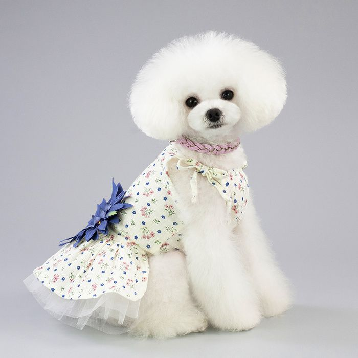 Pet Clothes 19 Small Daisy Skirt Elegant Dog Clothes in