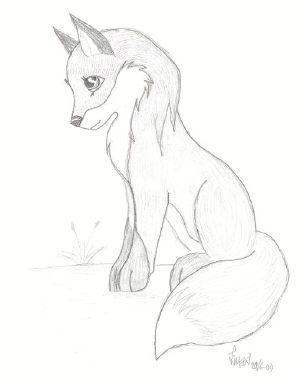 fox_norm_se.jpg (300×380)