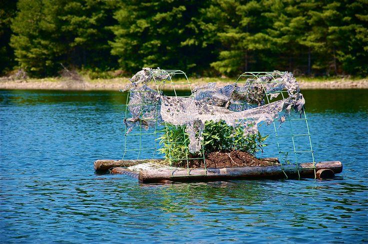 Quabbin reservoir fishing dsc massachusetts for Mass fish and wildlife