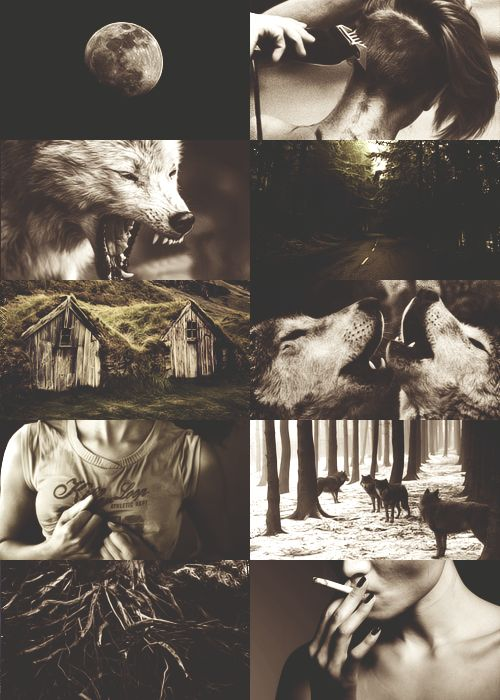 werewolves are loyal, rogue when burned. skin tearing, flesh turning, heart beating only for pack and moon.
