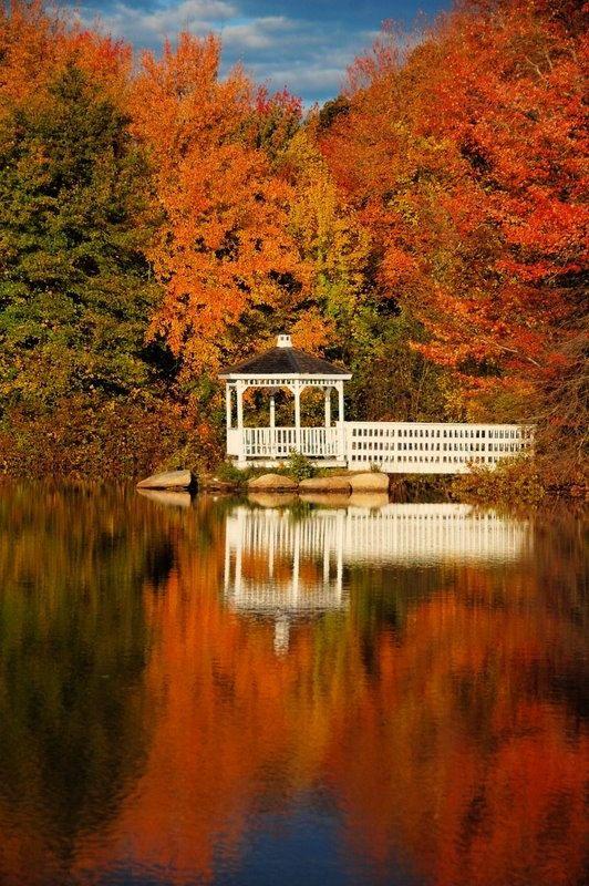 Autumn Leaves, White Gazebo | Colorful Autumn Leaves, New England