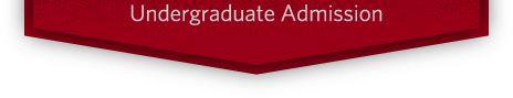 Carnegie Mellon National High School Game Academy