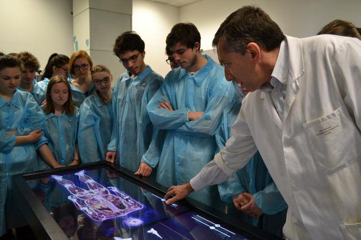 Une tablette tactile de la taille d'un être humain. Il y a quelques semaines, l'Université de Rouen a fait l'acquisition d'une table de dissection anatomique virtuelle, l'une des toutes premières de France. Elle permet de voir, en trois dimensions, l