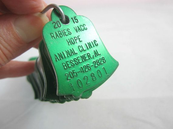 Over 100 Rabies Dog Tags Green Bell Shaped by VintageSouthernPicks