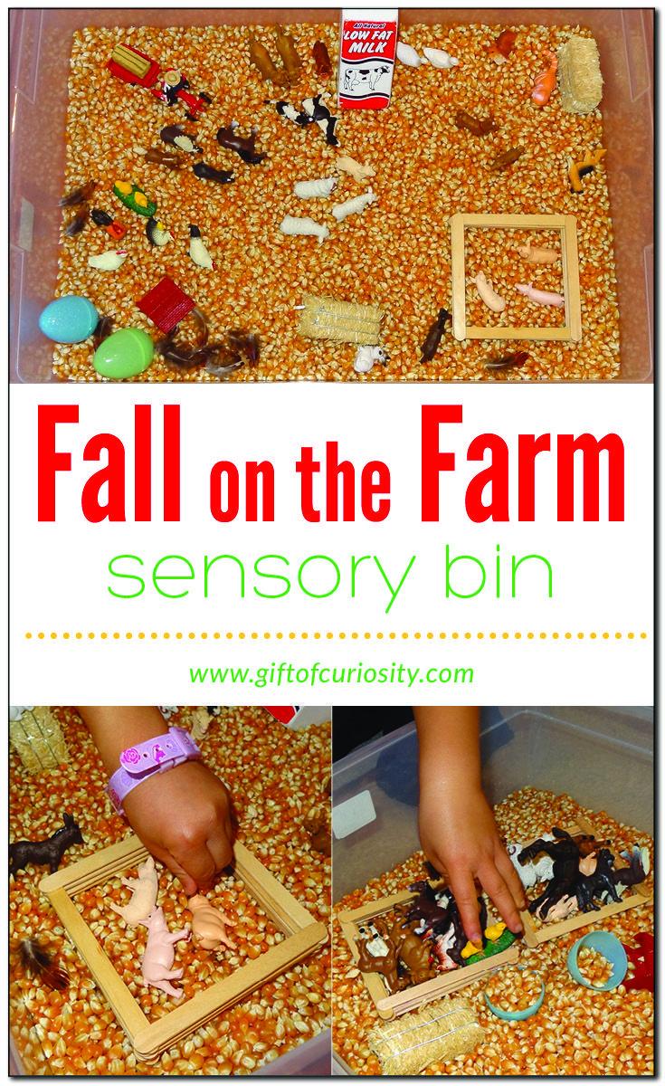 Fall on the Farm sensory bin
