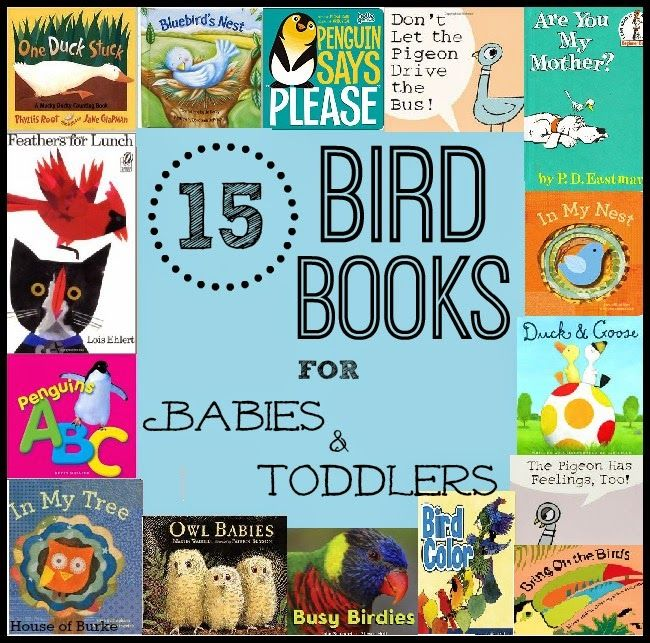 15 Bird Books for Babies and Toddlers - House of Burke