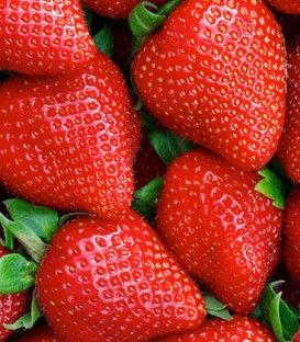 30ml Strawberry Vapetto Concentrate