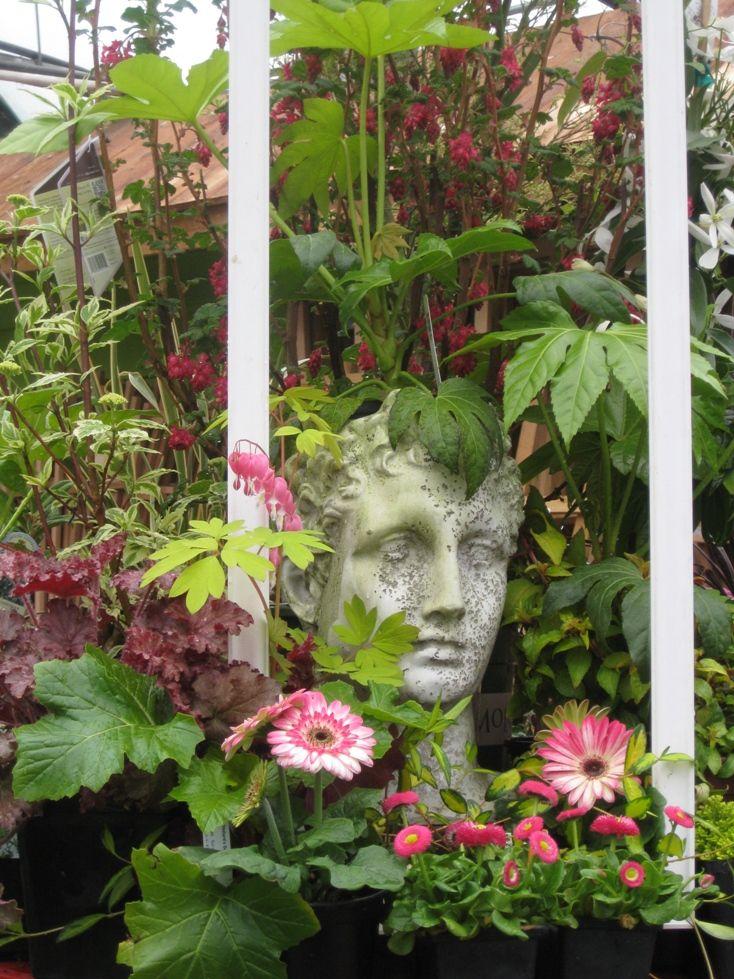 Framed planter shaped like a head mygardennursery.com