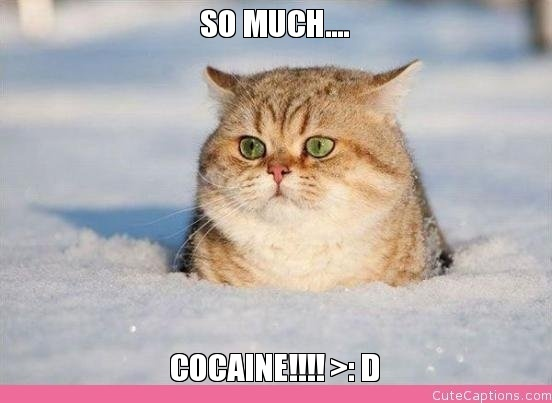 So Much…., Cocaine!!!! >: D