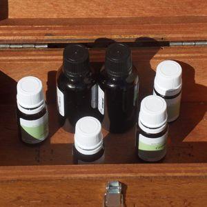 FORMATION Aromathérapie familiale : 6 huiles essentielles de base
