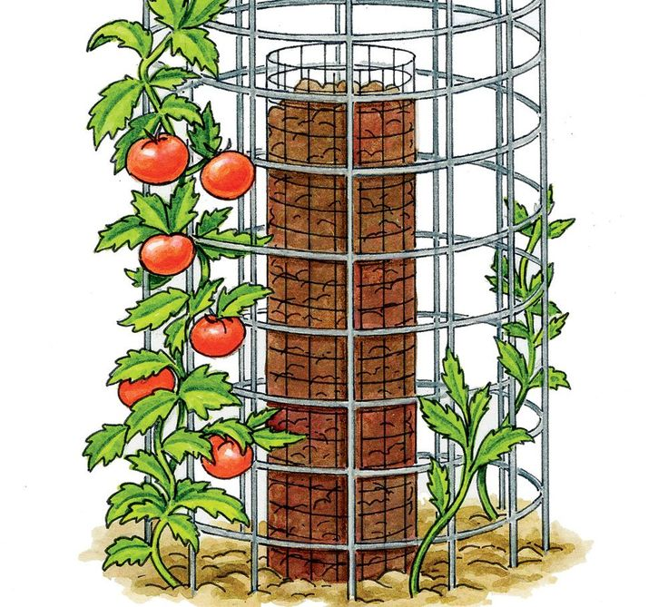 How To Grow 90 Pounds Of Tomatoes From Only 5 Plants  https://www.rodalesorganiclife.com/garden/90-pounds-tomatoes-5-plants?utm_campaign=OrganicLife