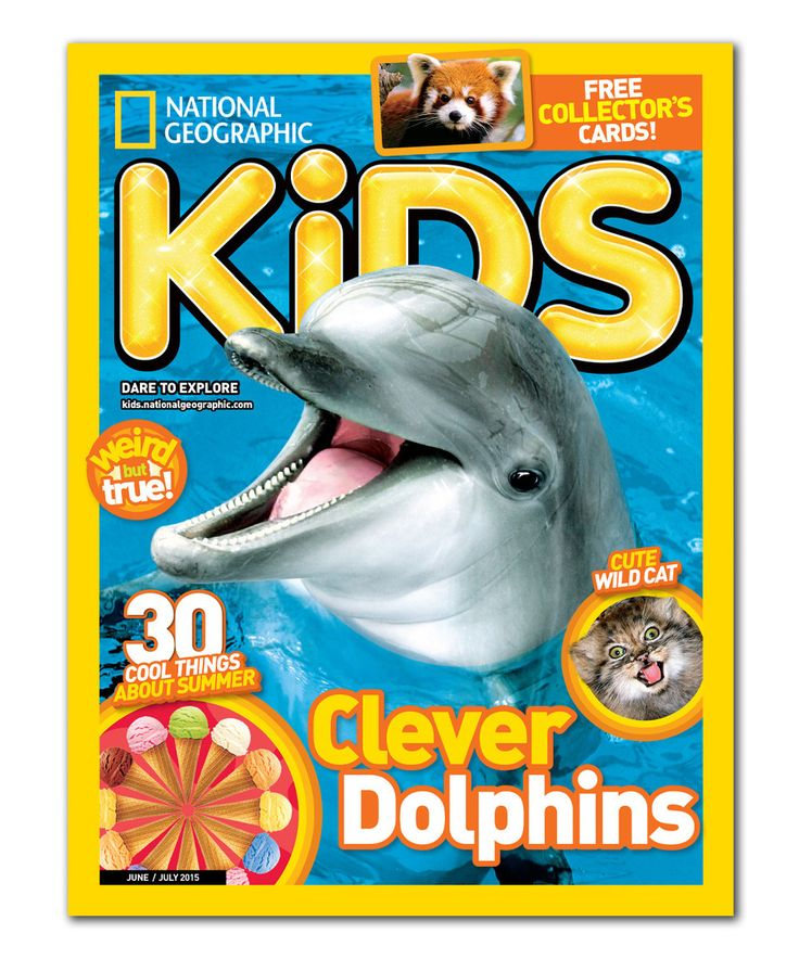 National Geographic Kids Magazine Subscription by Mailbox Must-Haves #zulily #zulilyfinds 10+