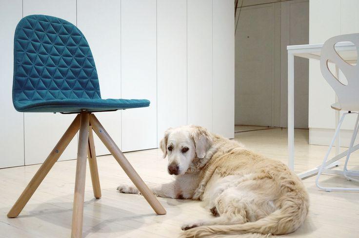 Maple chair by WertelOberfell www.werteloberfell.com  photo credits by MUS ARCHITECTS