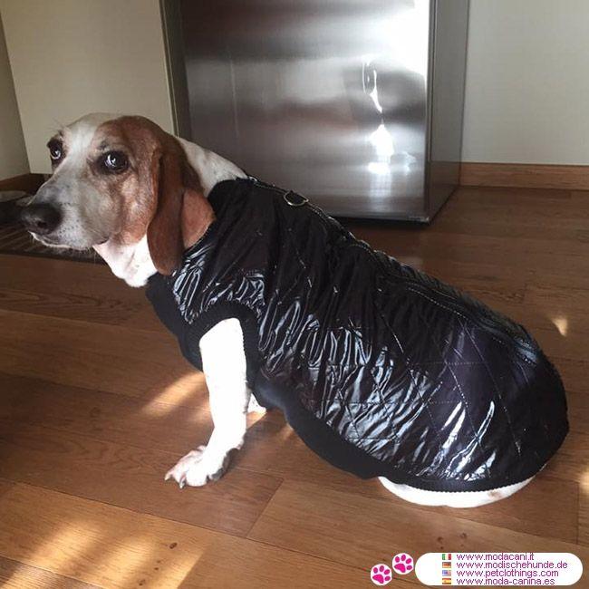 Giacca Nera con apertura sul dorso per cani grandi #ModaCani - Giacca Nera con apertura sul dorso per cani grandi, in Nylon esterno ed interno in pile, per mantenere caldo il cane; anche per Dogo Argentino