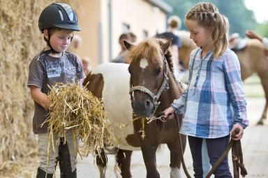 Boy and Girl at riding stable with mini shetland pony - Westend61/Brand X Pictures/Getty Images