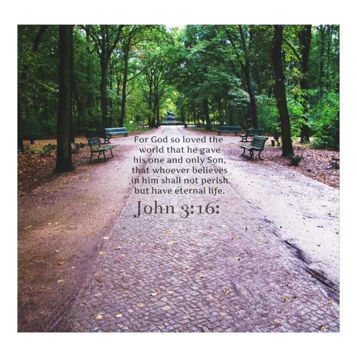 Customizable #Bible #Bible#Verses #Biblical #Inspirational #Nature #Quote #Verse John 3:16: Inspirational Biblical quote NATURE Canvas Print available WorldWide on http://bit.ly/2j2HUeG