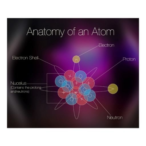 anatomy the atoms Charges of atoms you can see that each part of the atom is labeled with a +, -, or a 0 those symbols refer to the charge of the particle.